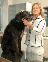 Tierarztpraxis Maul + Herget Behandlung 02