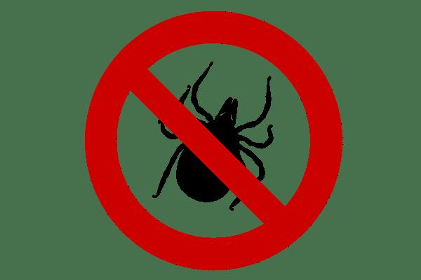 Tierarztpraxis Maul + Herget Zecken