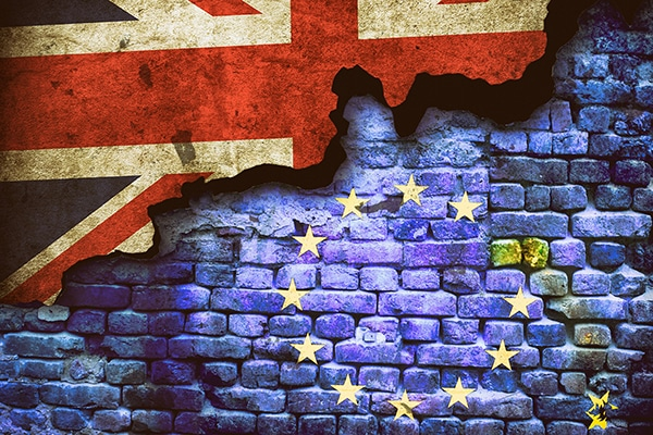 Tierarztpraxis Maul + Herget Brexit02