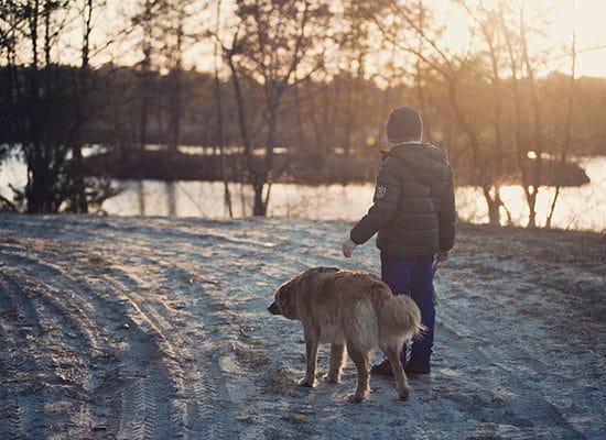 Tierarztpraxis Maul + Herget Schnee